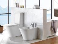 Fine BTW Close Coupled Toilet Pan